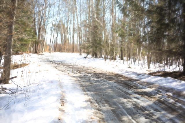 sněžná cesta